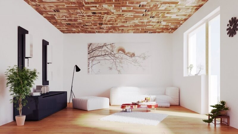 Interior Visualization _ Ceiling System